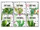 Editable Student Jobs - Succulent - Cactus - Decor
