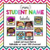 Mini Editable Student Nametag Labels {Back to School Organ