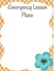 Editable Substitute Binder (Beach Theme)