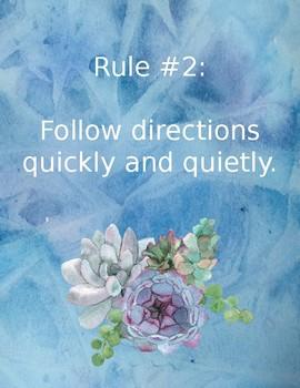 Editable Succulent Classroom Rules