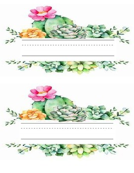 Editable Succulent Meet the Teacher Letter and Name Tags