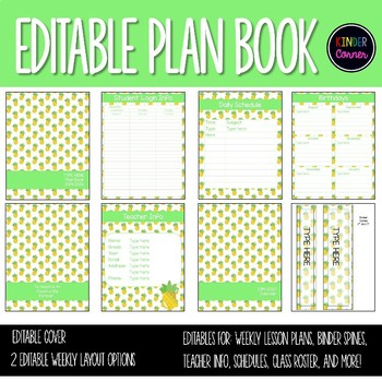 photo relating to Teacher Plan Books referred to as EDITABLE Trainer Planner 2019-2020 Pineapple Concept
