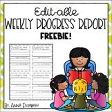 Editable Weekly Progress Report