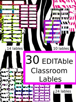 Editable Zebra Jungle Classroom Labels (30 different styles)