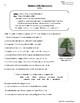 Language, Editing, and Grammar Skills Bundle   91 Printable Worksheets (Gr. 3-7)