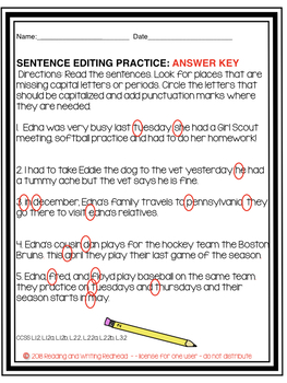 Editing FREEBIE  for Primary Grades