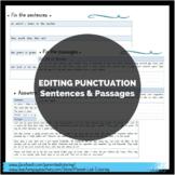 Editing Punctuation (Sentences & Passages)