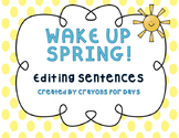 Editing Sentences with Posters: Spring