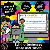 Editing Sentences - Tense and Plurals - Distance Learning