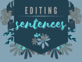 Editing Simple Paragraphs