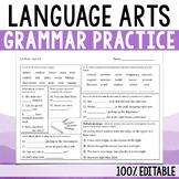 Daily Language Arts - Grammar Practice
