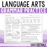 Daily Language Arts - Grammar Practice