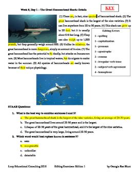 Editing with SSS - Week 8 - Great Hammerhead Shark