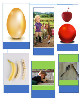 Edmark Materials: Picture Phrase Matching Activities BUNDLE special education