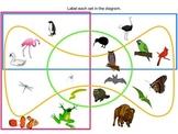 Edwards' Venn Diagrams