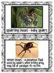 Eeek! Spiders! Nonfiction Unit