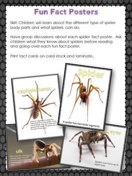 Eeeek Spiders Theme Pack