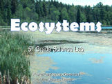 Effects of Changes in an Ecosystem