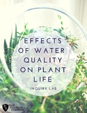 Effects of Water Quality on Plant Life