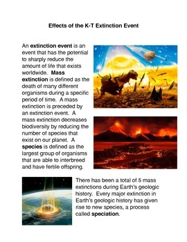 Effects of the K-T Extinction