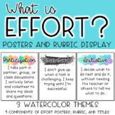 Effort Definition Posters and Rubric Display *3 Watercolor