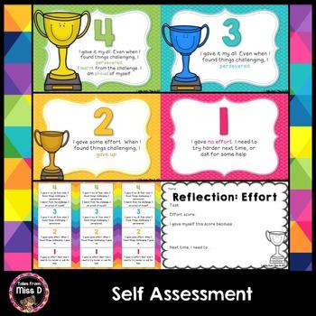 Self Assessment Effort