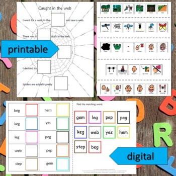 Eg and misc short e Spelling Unit for Special Education with Lesson Plans