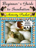 Spring Activities: Beginner's Guide to Incubation