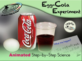 Egg-Cola Experiment - Animated Step-by-Step Science - Regular