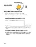 Egg Drop Demo write up