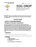 Egg Drop Lab
