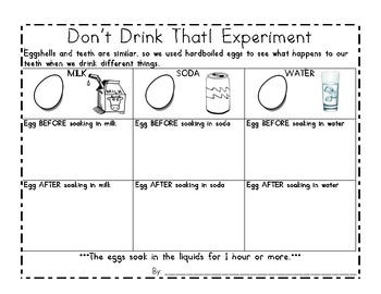 Egg Experiment (Dental Health)