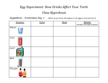 Egg Experiment: How Drinks Affect Your Teeth