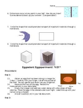 Egg Experiment- Osmosis- LS1-7  LS1-2