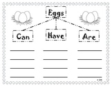 Egg Hatching and Chick Graphic Organizers and Writing