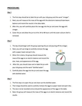 Egg Osmosis Lab (Editable)