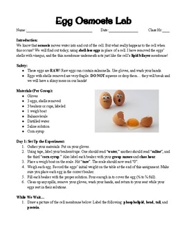 Egg Osmosis Lab by Kate's Science Shop | Teachers Pay Teachers