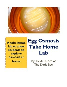 Egg Osmosis Take Home Lab