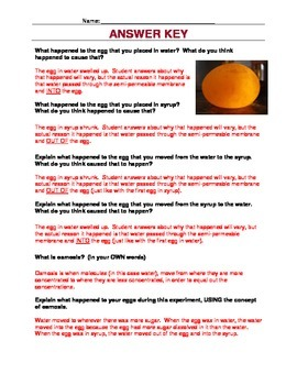 Egg Osmosis Take Home Lab by Heidi Hisrich | Teachers Pay ...