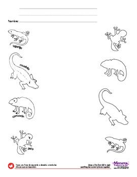 Egg-born Animals Spanish Lesson (4s) - Huevos Nacen Los Animales