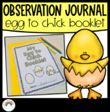 Egg to Chick Booklet | Chick Hatching Observation Journal