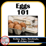 Eggs 101 (FACS, FCS, Culinary, Nutrition) Digital or Print