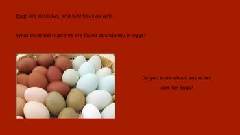 Eggs Slideshow