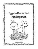 Kindergarten Chick Hatching Unit- Eggs to Chicks, NGSS Linked, STEM Activities