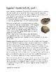 Eggshell Geode Activity