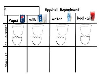 Eggshell Tooth Dental Experiment Prediction Sheet Precious Preschoolers