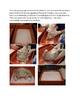 Egyptian Mummification Process: How to mummify a chicken