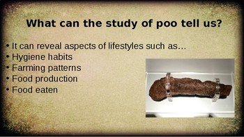 Egyptian Poos From the Past