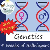 Eight weeks of Genetics Bellringers Warm Ups with Answer K