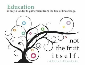 Einstein Poster - Education